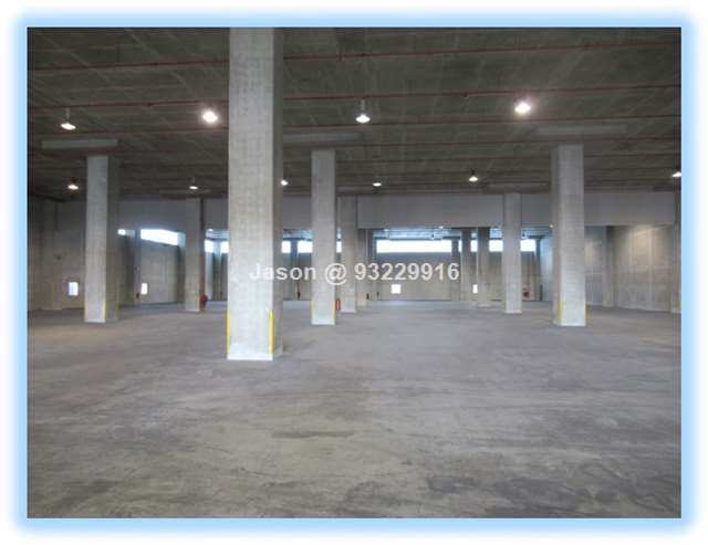 Warehouse| Ramp Up| Ceiling 8m| Loading Bays| 20,0