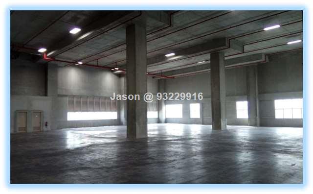 Warehouse| Pioneer |Ramp Up| Ceiling 8m| Loading B